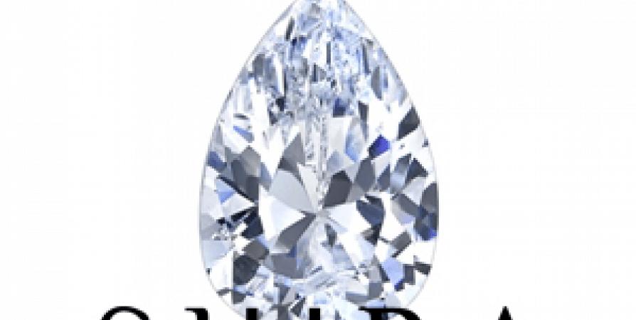 Pear_Diamonds_-_Shira_Diamonds_-_Wholesale_Diamonds_-_Loose_Diamonds (2)